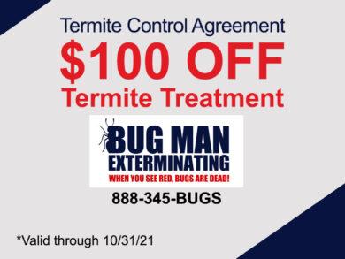 Termite $100